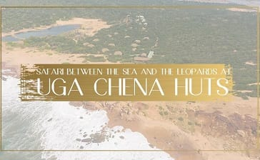 A Safari Between The Sea And The Leopards At uga Chena Huts