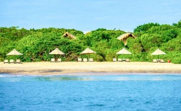 Eco-Tourism and Jungle Beach By Uga Escapes – Co-existing synonymously with nature!