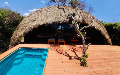 Rs.120,000 Stay A Little Paradise In Yala –Chena Huts by UGA Escapes Review